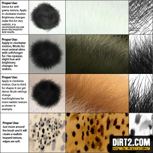 Fur Brush Instruction