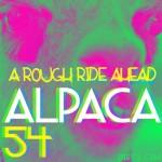 alpaca54